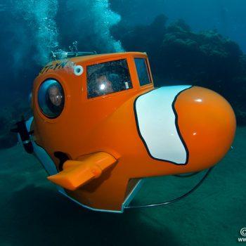 Nemo Resort Sub
